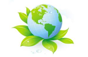 Rutolan Naturellement Vert #2